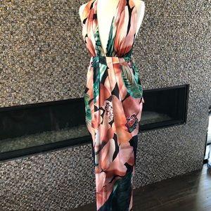 Bariano Sill Dress